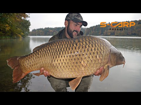 Smartinsko Jezero - Carp fishing