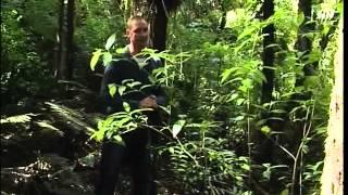 Living Nature - Videothek