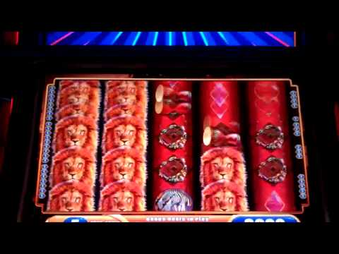 King of Africa MAX BET BIG WIN slot machine bonus with Minor Progressive
