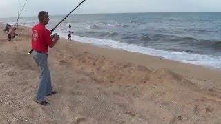 ловля пеленгаса на азове
