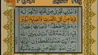 Tilawat Quran with urdu Translation-Surah Al-Baqarah (Madani) Verses: 262-271