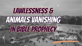 """♡ http://www.bibleprophecygirl.wordpress.comIn this video, I show news clips of lawlessness and animals mysteriously disappearing just as described in Hosea 4 showing we really are seeing Bible prophecy unveil before our very eyes!! Repent and turn to Jesus because He's coming just as He said! ♡♡♡ Music by ARTEX Promo """"Inspiring""""♡ Resources: http://abc7.com/news/hate-crime-charges-filed-against-4-in-facebook-live-torture-case/1688006/http://www.cbsnews.com/news/hate-harassment-incidents-spike-since-donald-trump-election/http://abc7.com/news/lapd-search-for-suspect-wanted-in-armed-robbery-in-tarzana/1586472/http://www.cnn.com/videos/us/2015/08/24/ashley-madison-josh-duggar-tlc-john-edwards-jim-baker-jimmy-swaggart-ted-haggard-orig.cnn/video/playlists/ashley-madison-hack/http://www.cnn.com/interactive/2016/12/specials/vanishing/"""