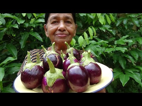 Village Foods ❤ Village Style Eggplant Recipe by my Mom