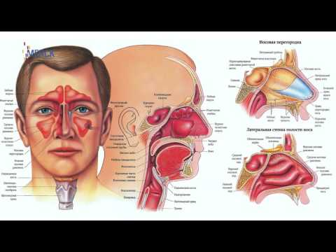Ранняя диагностика рака головы и шеи в Казахстане