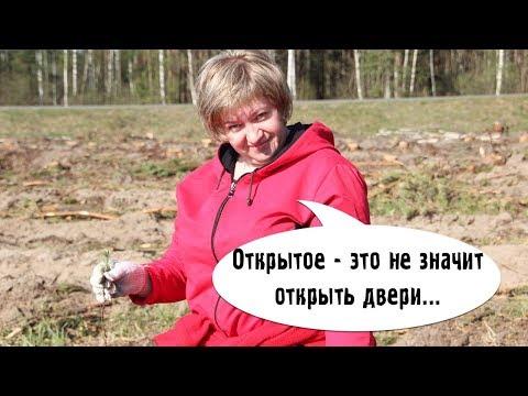 Что такое открытое заседание Версия чиновника - DomaVideo.Ru