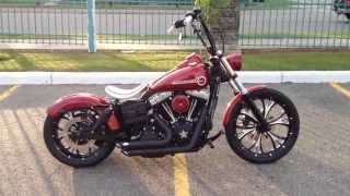 9. 2011 Harley Davidson FXDB Street Bob Custom