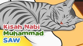 Video Kisah Nabi Muhammad SAW Keistimewaan Muezza Kucing Rasulullah - Kartun Anak Muslim Indonesia MP3, 3GP, MP4, WEBM, AVI, FLV Desember 2018