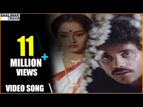 Majnu Movie || Idi Tholi Raatri Video Song || Nagarjuna, Rajini || Shalimarcinema