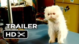 The Right Kind Of Wrong Official Trailer  1  2014    Catherine O Hara Movie Hd