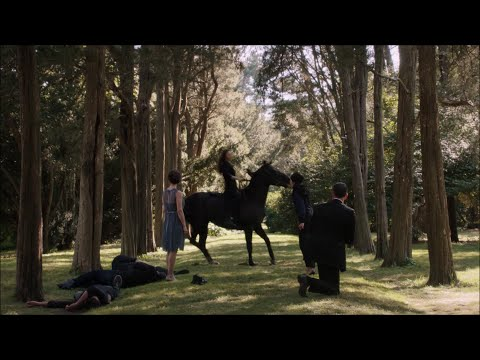 Person of Interest - That's the root style (05x06)
