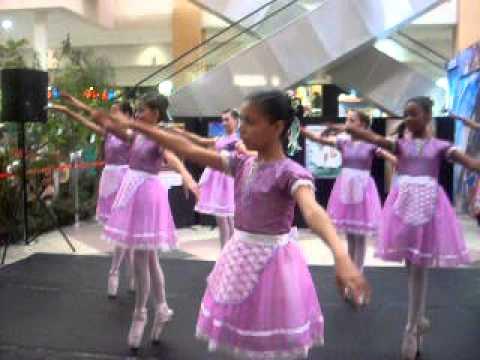Escola Municipal de Bailado Taboão da Serra - Alegria Campestre