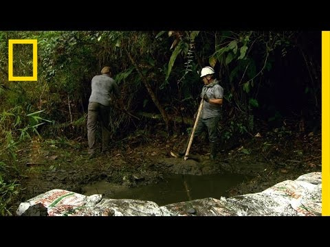 The Life of a Miner In Colombia | Mine Hunters