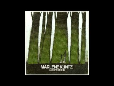 , title : 'Marlene Kuntz - Lieve'