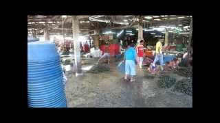 Video Seafood and fish at the Paranaque (Manila) fish market. Fresh, cheap and delicious. MP3, 3GP, MP4, WEBM, AVI, FLV September 2018