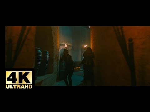 John wick: Chapter 3 - Parabellum(2019) - Escaping Casablanca scene Movieclips