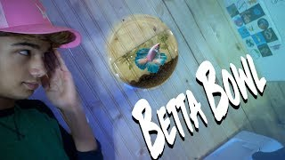 Setting up a HANGING BETTA FISH BOWL!!! by  Challenge the Wild