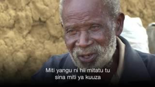 Kilifi Kenya  City pictures : Baa la njaa Kilifi, pwani ya Kenya