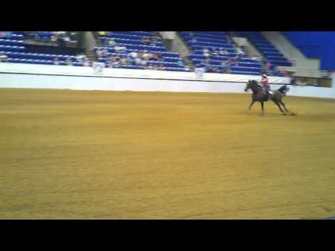 Bonnie's Secret, Tiffany Sims - Roanoke Valley Horse Show 2011