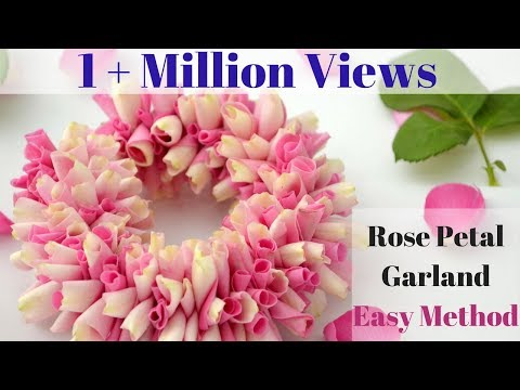 Video How to String Rose Petals garland || Easy Method to make garland Rose Petals || Rainbow Rangoli download in MP3, 3GP, MP4, WEBM, AVI, FLV January 2017