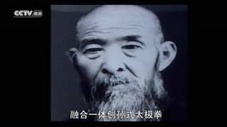 Tai Chi around China - documentary (Chinese)
