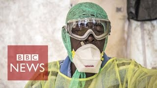6 surprising stats about Ebola virus - BBC News