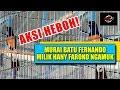 foto Aksi Heboh...!!! Murai Batu  Fernando Juara Nasional Ngamuk Di Indo Jaya CUP II Milik Hany Faroko
