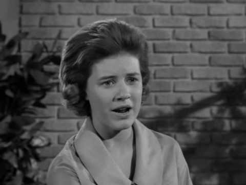 The Patty Duke Show S2E28 Patty The Master Builder
