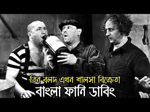 Three Stooges Bangla Funny Dubbing | Bangla Funny Video | Khamoka tv