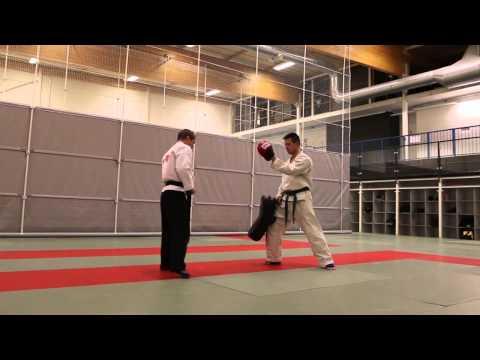 Hokutoryu jujutsu training clips – kicking techniques