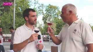 Provas de Vinhos do Dão na Feira