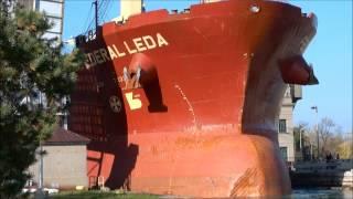 Video Ship FEDERAL LEDA on Welland Canal MP3, 3GP, MP4, WEBM, AVI, FLV Maret 2019