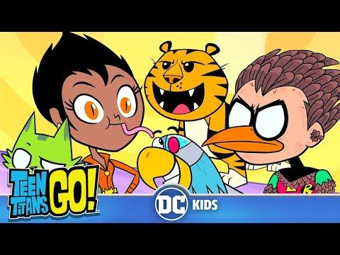 Teen Titans Go! En Latino | Super Animales | DC Kids