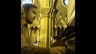 Filii Mariae - Curityba Domingo Laetare Vozes: João Victor, Matheus e Vinícius. Organista: Junior Foggiatto Cathedral Basílica Nossa Senhora da Luz - Curitiba ...