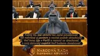 Video Rock Rose - Nemá problémy, gorila