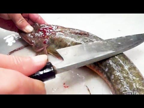 Japanese Street Food - FLATHEAD FISH Soup and Tempura - Thời lượng: 17 phút.