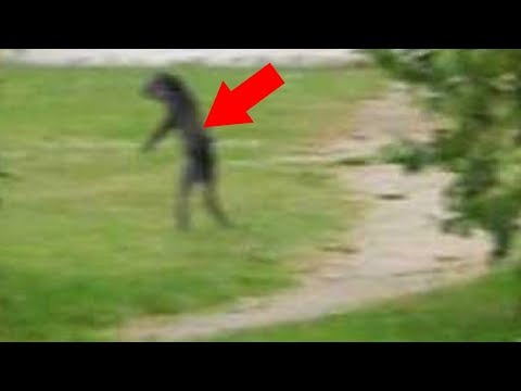 5 Unexplained Beings Caught On Camera & Spotted In Real Life!