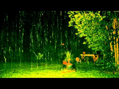 """Rain Sounds"" with no Music 90mins ""Sleep Sounds"""