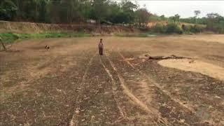 Video JSD (16/10/17) Rio Araguaia está secando em alguns locais MP3, 3GP, MP4, WEBM, AVI, FLV Oktober 2017