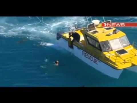 Shark Attack – Wie man dem Hai entkommt