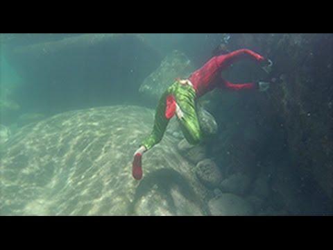 Đã ai thấy lặn bắt ốc, bào ngư ở biển chưa
