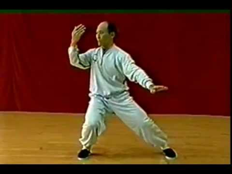 Master Deng 1998 Reflection-Form Classical Yang Taijiquan with Posture Captions in English (видео)