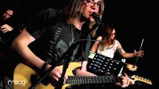 The Dandy Warhols | Green | MOOG SOUND LAB