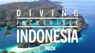 Indonesia is an epicenter of biodiversity, hosting a greater variety of marine life than anywhere else on earth. Thriving off...