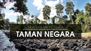 Taman Negara Malaysia  City new picture : MALAYSIA - TAMAN NEGARA 3/2016 | GoPro