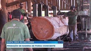 Madeira tratada é sinônimo de versatilidade na construção civil e no agronegócio