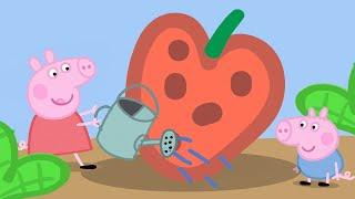 Video Peppa Pig Season 1 Episode 10 - Gardening - Cartoons for Children MP3, 3GP, MP4, WEBM, AVI, FLV Juli 2019