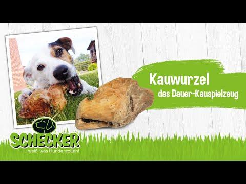 Die Kauwurzel - das neue Dauer-Kauspielzeug für Hunde.