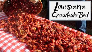 Video Authentic Louisiana Crawfish Boil - How to Boil Crawfish Louisiana Style! 2019 MP3, 3GP, MP4, WEBM, AVI, FLV Juli 2019