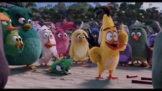Nonton Angry Birds  2016    Hilarious Moments Film Subtitle Indonesia Streaming Movie Download