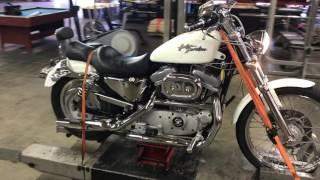 2. 2002 Harley Davidson Sportster XL 883C (White) # 1821 Fallen Cycles